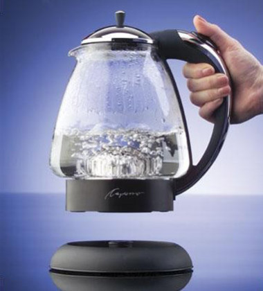 H2O Plus Electric Water Kettle