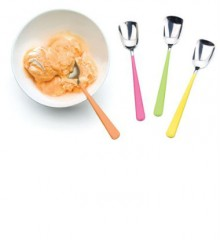 Enamel Handle Ice Cream Spoon Set